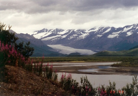 Denali Highway  Alaska  July, 1999